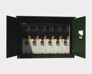 XGW12-12 10KV智能必威网页登陆开闭所